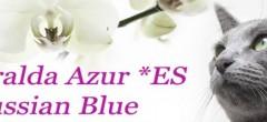 banner esmeralda azur