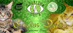 crinitus-deos